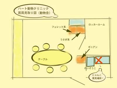 にゃんこ先生の失踪_d0129766_15444194.jpg