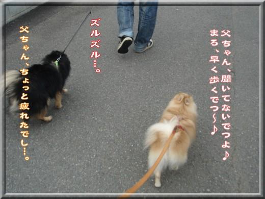 b0078073_223946.jpg