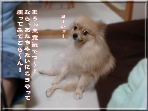 b0078073_2272065.jpg