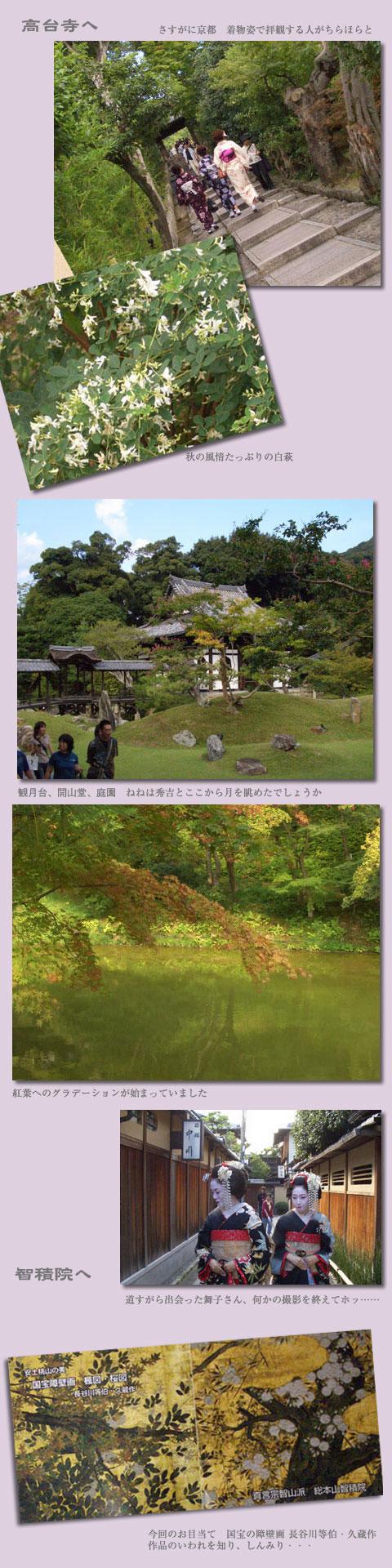 久方ぶりに歩いた京都_d0133320_23523731.jpg