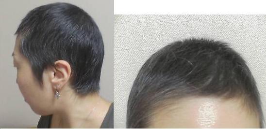 髪の毛_f0113630_19394774.jpg