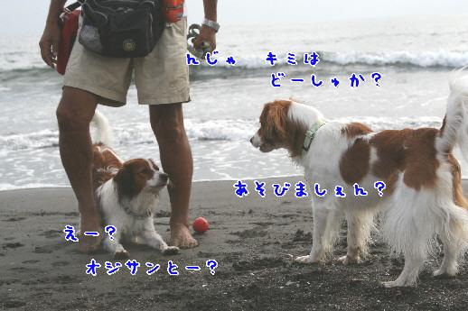 d0013149_1115358.jpg