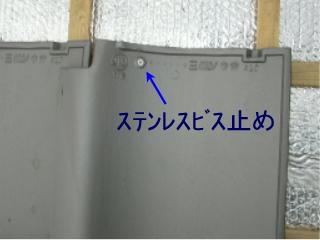 b0099212_1644321.jpg