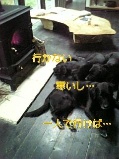 f0148927_2224483.jpg
