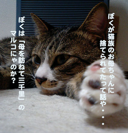 a0084070_221991.jpg