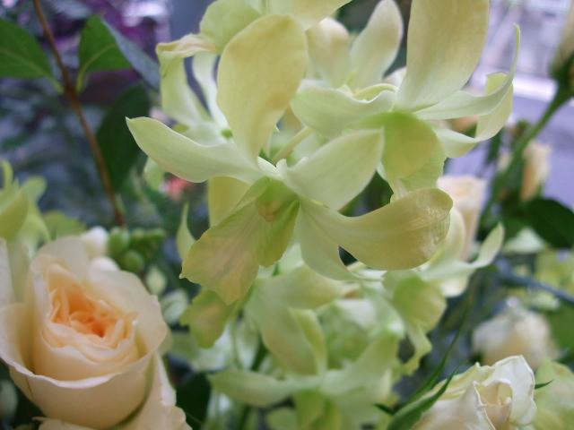 オークリーフ(バラと蘭の花のアレンジメント)_f0049672_1658574.jpg