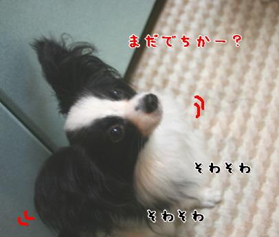 d0013149_9382062.jpg