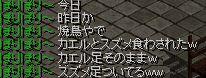 a0061353_11411174.jpg