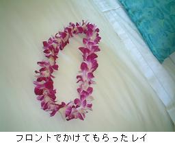 a0005060_1338924.jpg