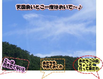 f0040805_1423412.jpg