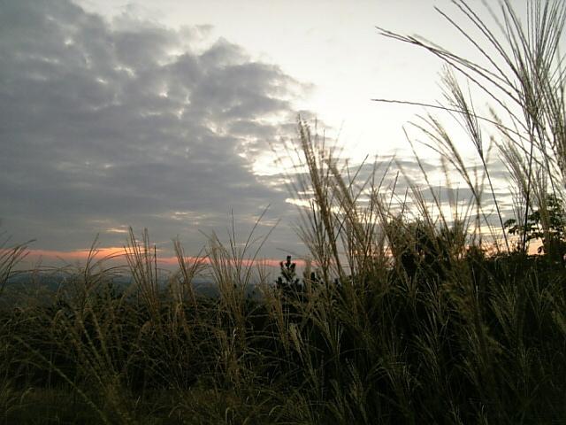 兵庫県立西はりま天文台公園_f0115811_1542644.jpg