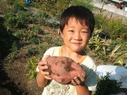 収穫~_f0096955_17523210.jpg