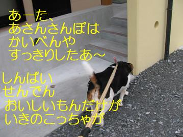 d0104209_23162328.jpg