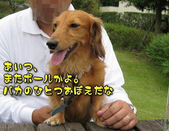 b0044804_1025823.jpg
