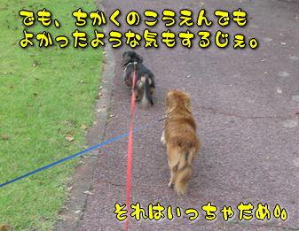 b0044804_10273648.jpg