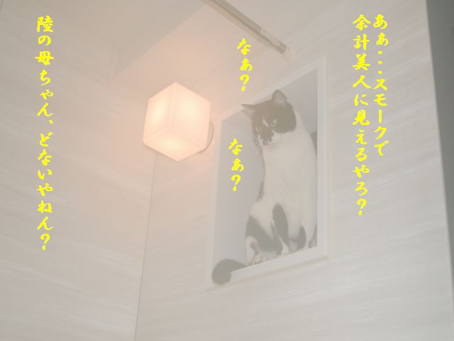 e0094407_18553520.jpg