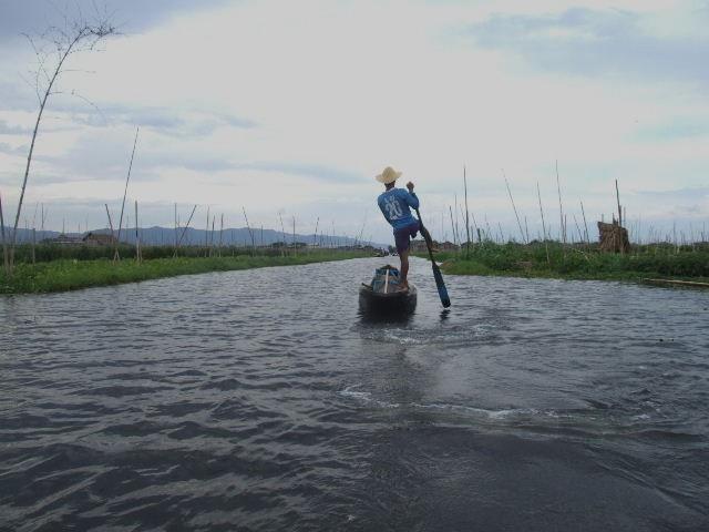 <インレー湖> インダー族の片足漕ぎと水上農園_c0011649_9484652.jpg