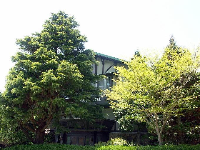 六甲山ホテル旧館_f0116479_12414399.jpg