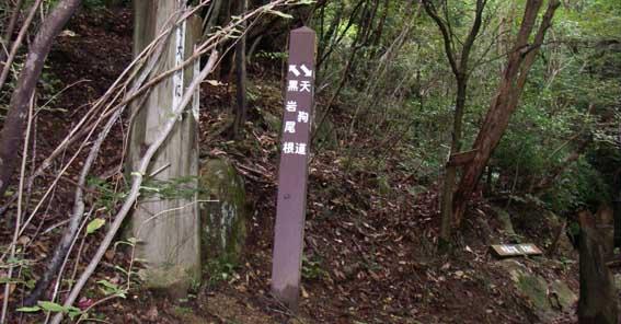 07.10.09(火) 山寺尾根を下る_a0062810_19113237.jpg