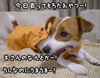 f0129214_13515025.jpg