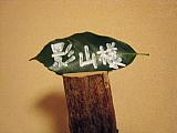 兵庫県姫路市での研修を担当させていただいて・・・。_d0046025_2342442.jpg