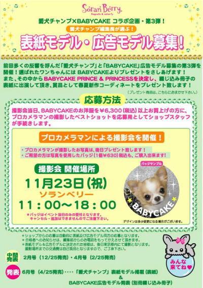 BABYCAKE撮影会第3段決まりました!!_b0084929_21595911.jpg
