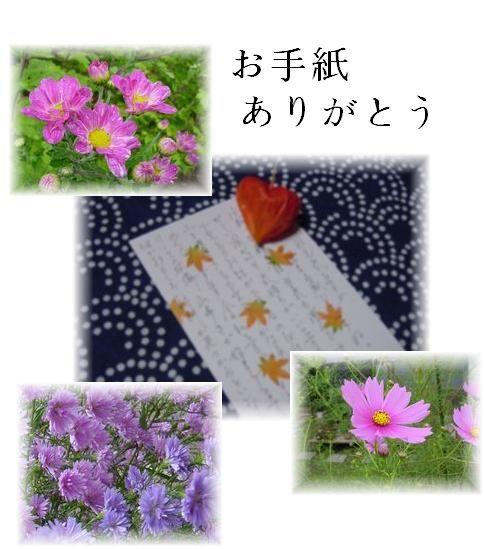 f0088197_226248.jpg