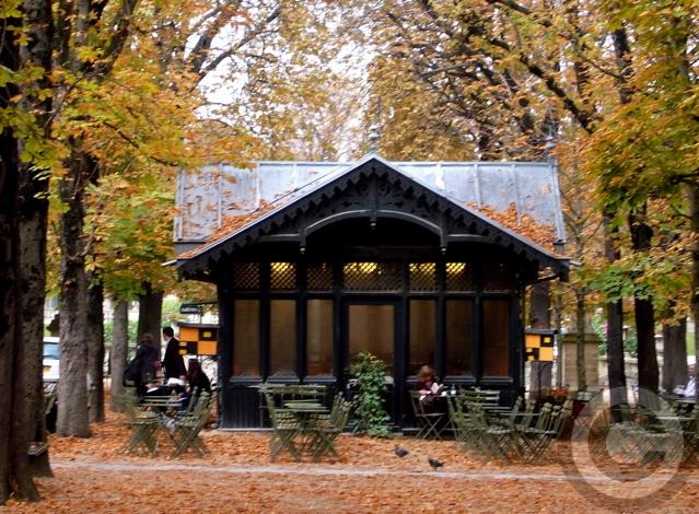 ■秋のリュクサンブルグ公園(パリ)_a0008105_19221957.jpg