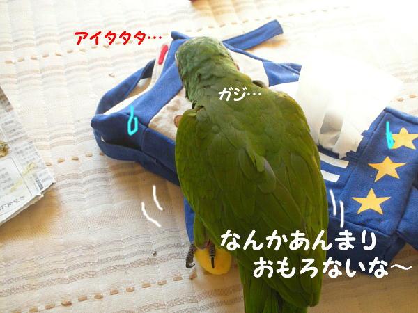 f0132055_9485140.jpg