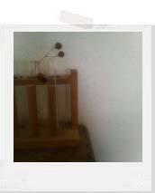 キッチン_f0128761_2244125.jpg