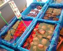 なつおさん 福島へ行きました♪_f0096569_2284655.jpg