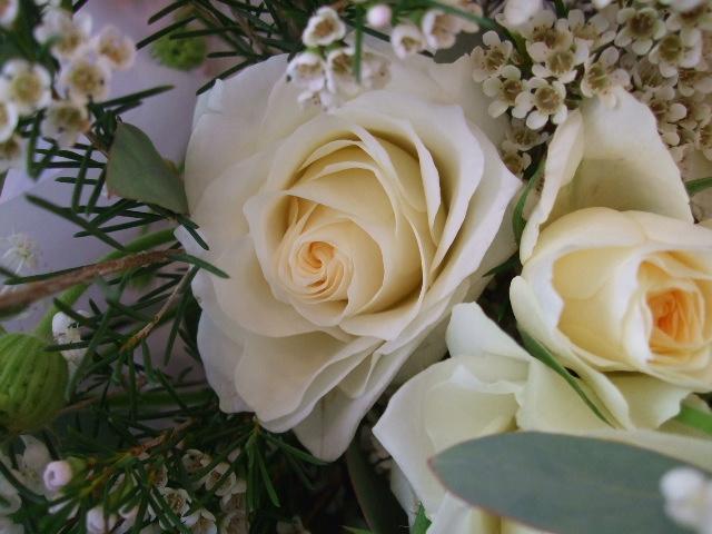 オークリーフ(イングリッシュアイズの白い花束)_f0049672_18265053.jpg