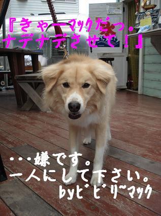 相模原オフ会~コバ家のハプニング王列伝 ~完結編_d0087483_2164363.jpg