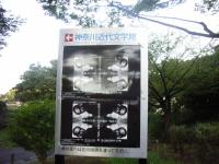 f0108825_21401767.jpg