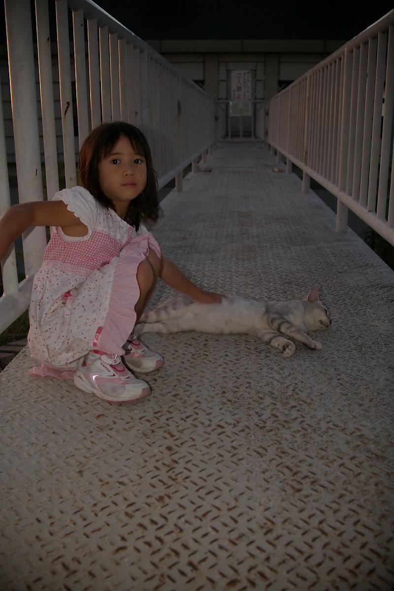猫と・・・ Part3_f0021869_9165883.jpg
