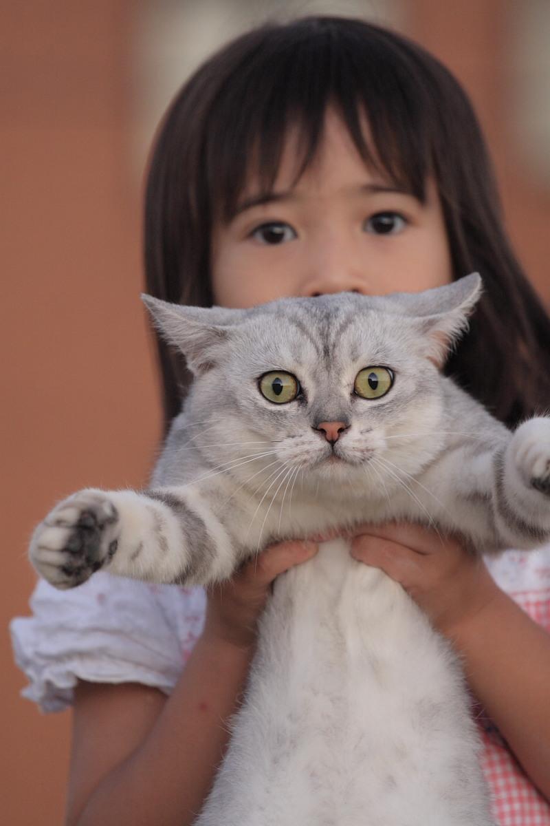 猫と・・・ Part3_f0021869_9183192.jpg
