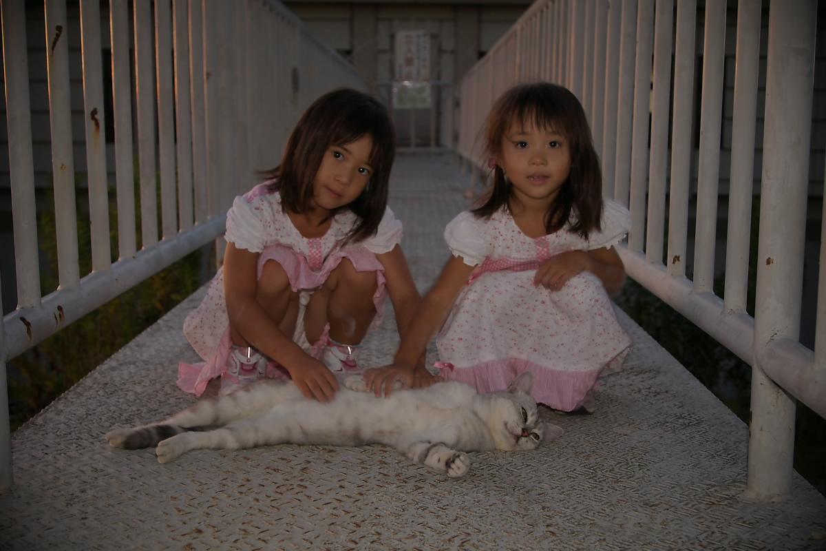猫と・・・ Part3_f0021869_9195220.jpg