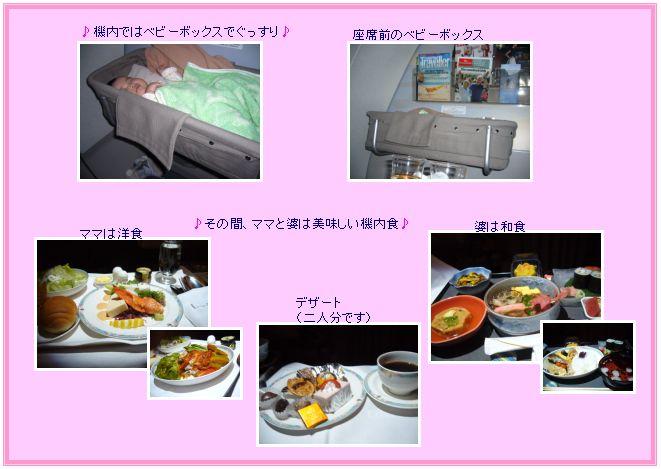 c0051105_1175077.jpg