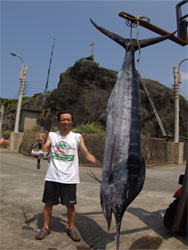 巨大魚の島、八丈島で257.5キロのクロカワ!   [カジキ・マグロトローリング]_f0009039_21542322.jpg