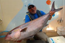 巨大魚の島、八丈島で257.5キロのクロカワ!   [カジキ・マグロトローリング]_f0009039_21543740.jpg