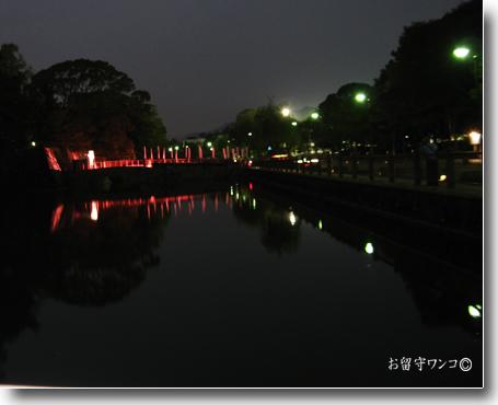 f0111147_233028.jpg
