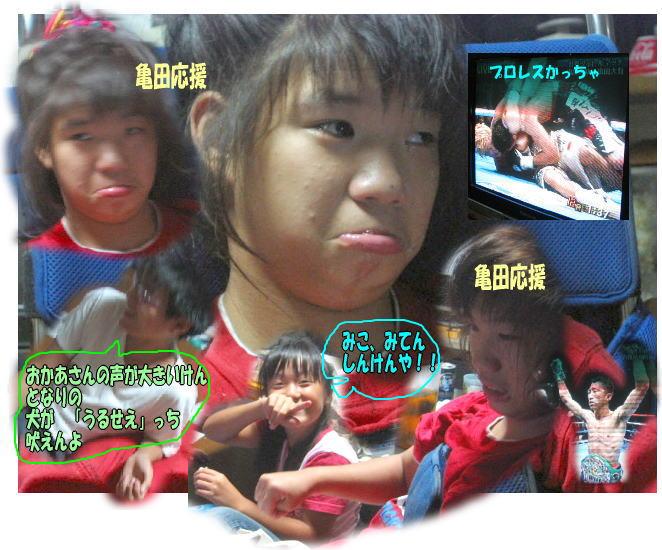f0082367_162688.jpg