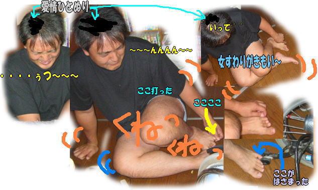 f0082367_1635592.jpg