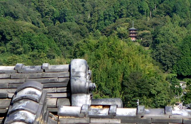 橘寺から岡寺の三重塔を望む_b0008289_20552434.jpg