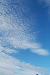 ようやくの秋の空。_d0028589_22532013.jpg