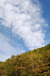ようやくの秋の空。_d0028589_22555096.jpg