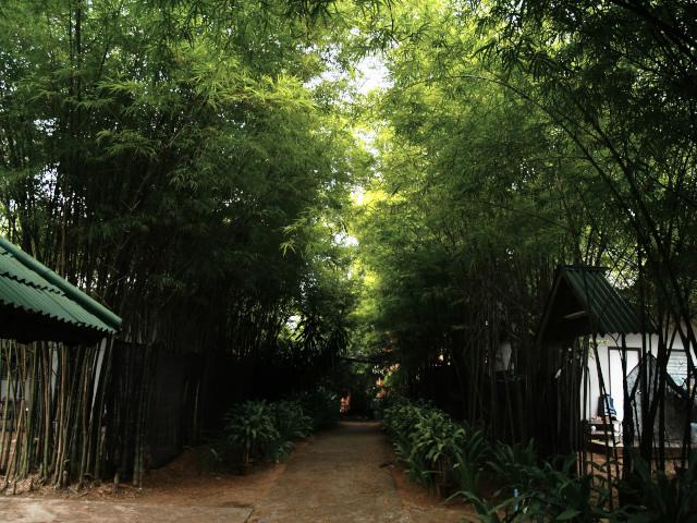 タイの風景 まずは宿探し、そして両替_f0024992_11221375.jpg