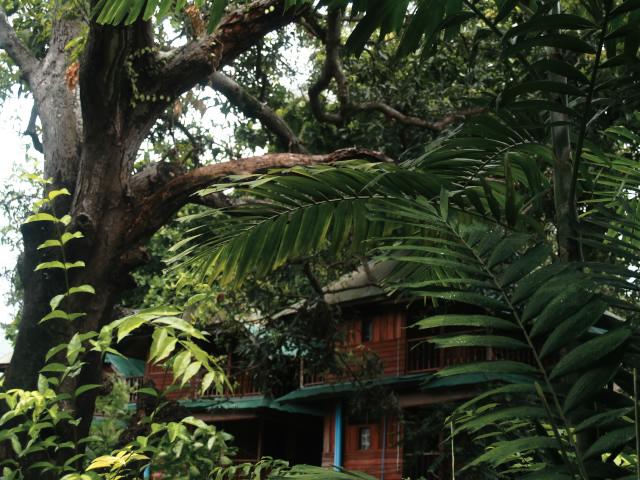 タイの風景 まずは宿探し、そして両替_f0024992_11231974.jpg