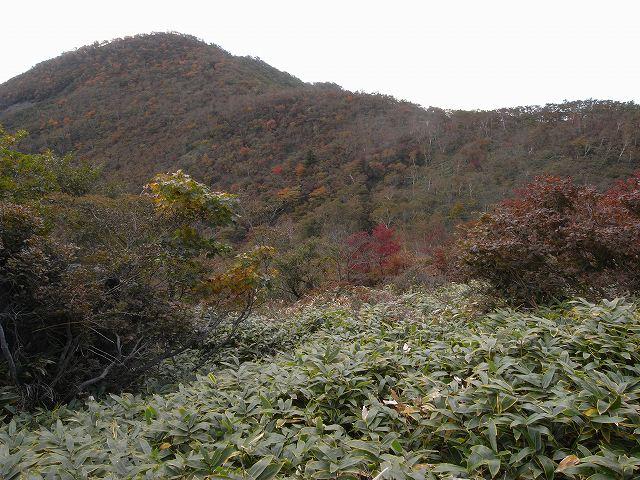 10月12日、赤城山(黒檜山)に登る_f0138096_16561291.jpg