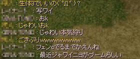 c0105101_1025531.jpg